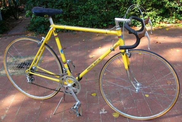 Yellow Bertin 1