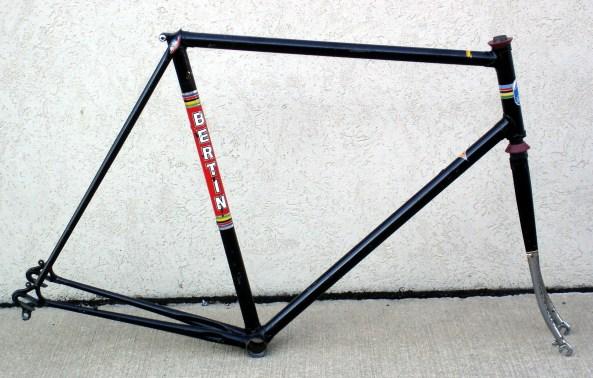 Bertin R Profile 1